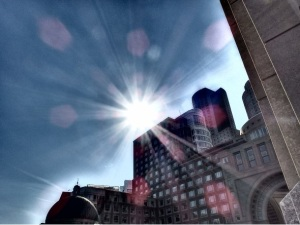 boston rays